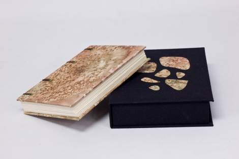 Coptic Book with Clamshell Box, 2011